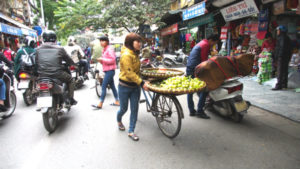 Vietnames Fruit Vendor sells from her bicycle